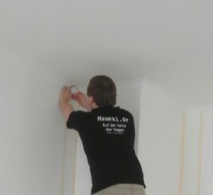 Ein Sieger-T-Shirt war beim Malern in MPs neuer Wohnung beteiligt